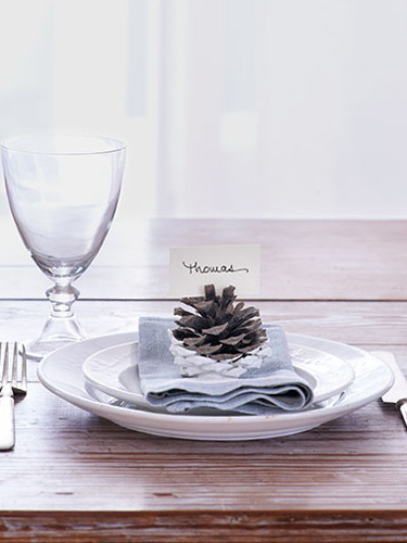 placecards-tips-pinecones-1113-eMc0Zw-xln